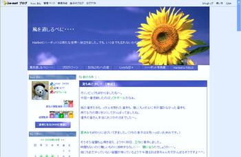2008.6~ ひまわり